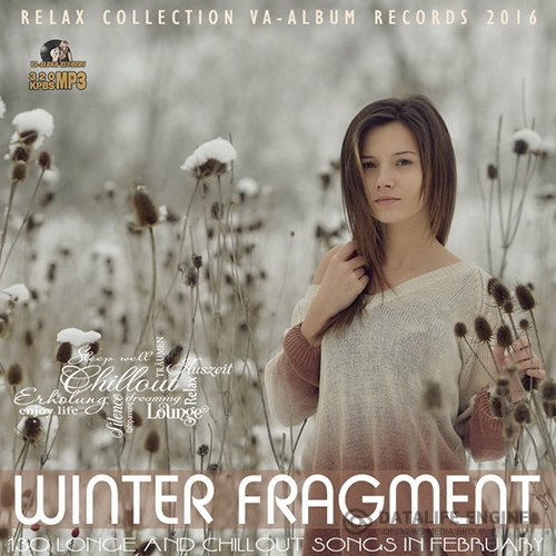 Winter Fragment: Relax Party (2016)