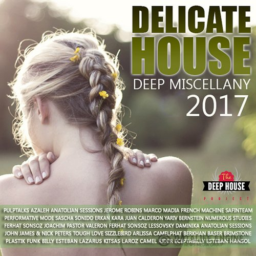 Delicate House: Deep Miscellany (2017)