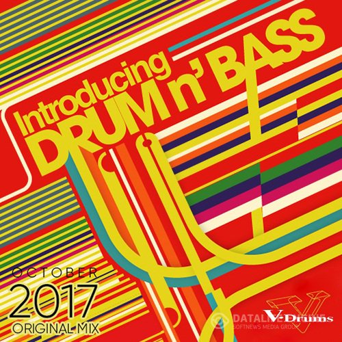 Introducing Drum And Bass (2017)