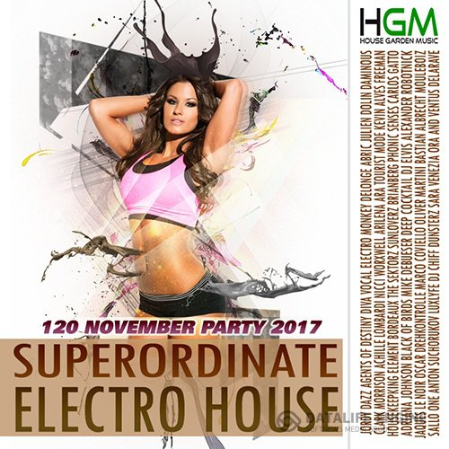 Superordinate Electro House (2017)