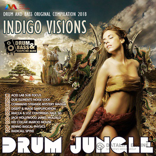 Drum Jungle: Indigo Visions (2018)