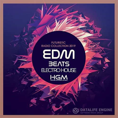 EDM Beats Electro House (2019)