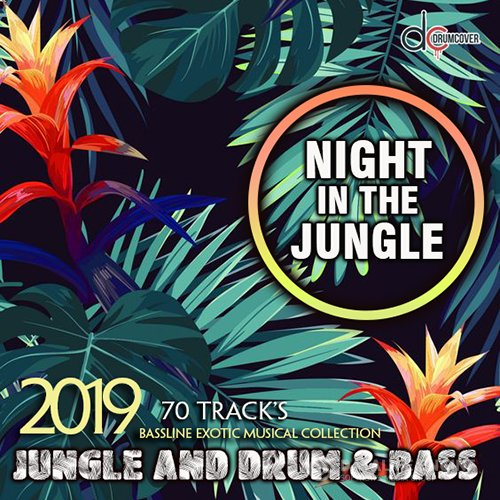 Night In The Jungle (2019)