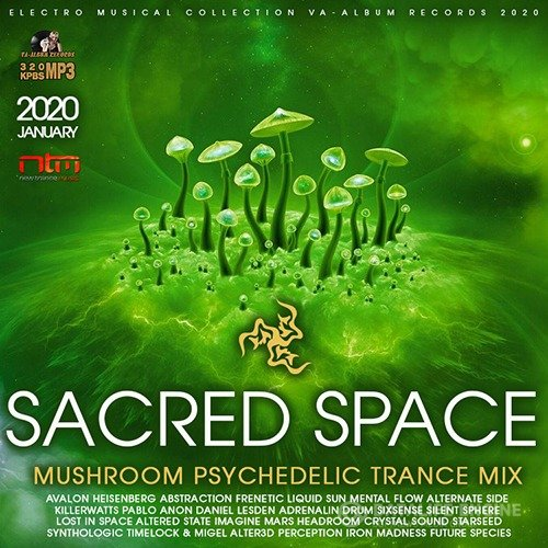 Sacred Space: Mushroom Psy Trance Mix (2020)