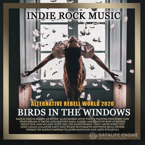 Birds In The Windows (2020)