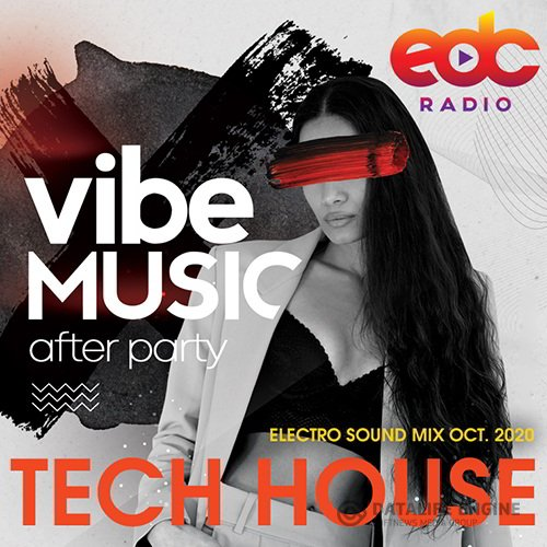 Vibe Music: Tech House Electro Sound Mix (2020)